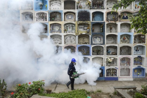 Fumigación contra el zancudo que transmite el zika AFP / ERNESTO BENAVIDES