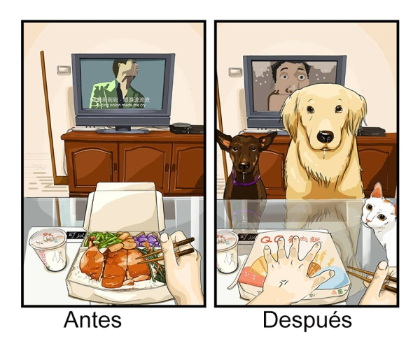Tener Un Perro 3
