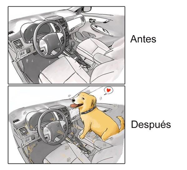 Tener Un Perro 7