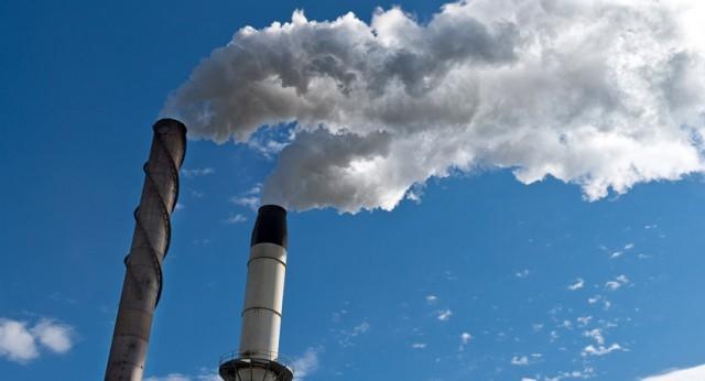 Foto: ecologiaverde.com