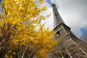 La Torre Eiffel se une a los monumentos que cierran este sábado por protestas