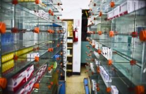 Desabastecimiento de medicinas en Caracas es de 92%