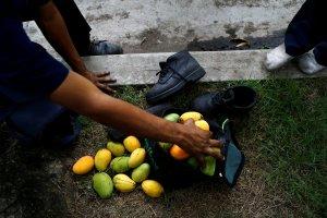 ¡Tragedia! Joven futbolista murió electrocutado tratando de bajar mangos en Margarita