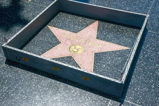 trump-star-wall2