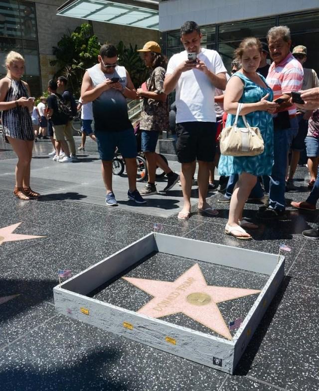 trump-star-wall3