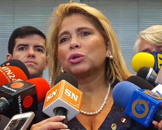 Comisión del Parlamento del Mercosur