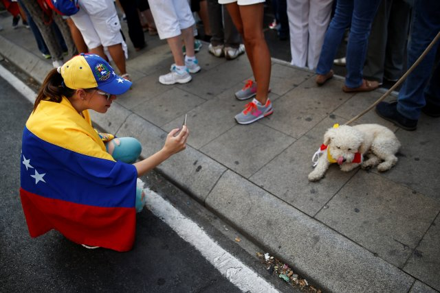 A protester takes pictures of a dog wearing the Venezuelan flag around his neck during a demonstration to demand a referendum to remove Venezuela's President Nicolas Maduro, in Madrid, Spain, September 4, 2016. REUTERS/Susana Vera