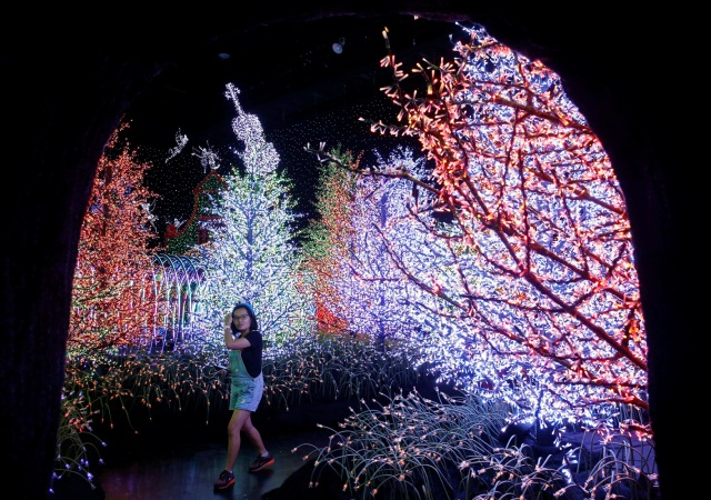 A woman tours a Christmas attraction featuring a display of more than 800,000 light bulbs in Universal Studios Singapore December 12, 2016. REUTERS/Edgar Su