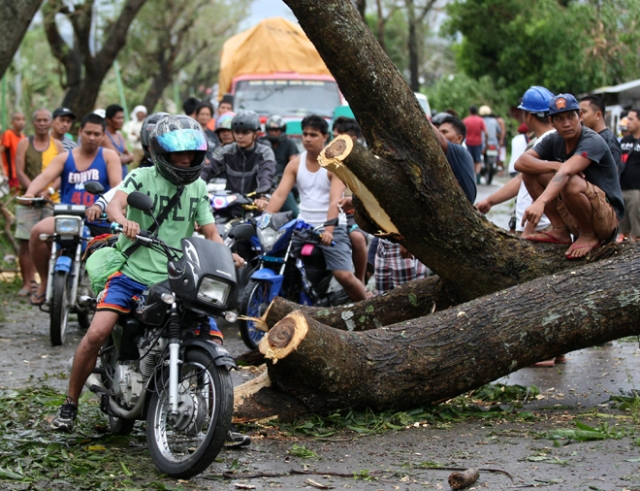 FRM101. Milaor (Philippines), 25/12/2016.- Filipino motorcycle riders maneuver next to a toppled tree in the typhoon-hit town of Milaor, Camarines Sur, Philippines, 26 December 2016. According to Office of Civil Defense (OCD) reports on 26 December, hundreds of thousands of villagers spent their Christmas day in evacuation centers in Bicol region, many flights were cancelled at Manila's internatioanal airport, and scores of sea vessels have reportedly sunk as Typhoon Nock-ten brought howling winds and strong rains in central Philippines. (Filipinas) EFE/EPA/EUGENIO LORETO