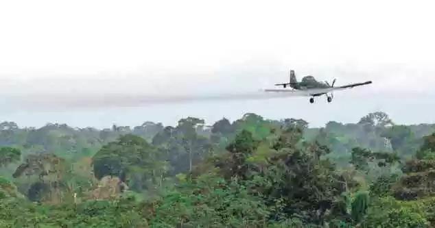 La  fumigación aérea, que es el método de erradicación defendido por Estados Unidos, no se podrá aplicar más en  Colombia  como medida preventiva de salud y ambiental.