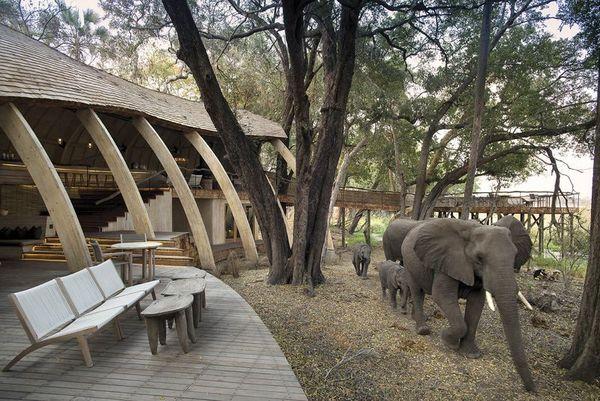 AndBeyond es una de las empresas especializadas en safaris privados en Kenya y Bostwana. (AndBeyond)