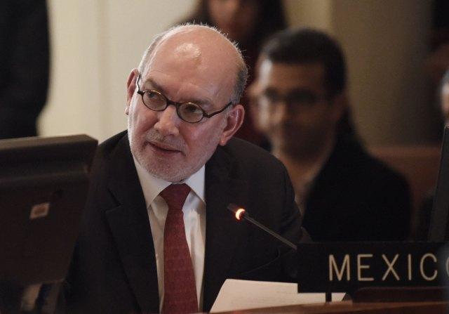 El embajador de México ante la Organización de Estados Americanos (OEA), Luis Alfonso de Alba