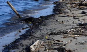 El lago de Maracaibo convertido en el más grande vertedero contaminado del planeta