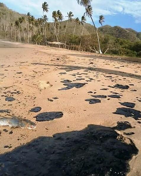 Playas de Paria, Estado Sucre, es bastante notoria la presencia de grandes parches de petróleo sobre la arena y el agua.
