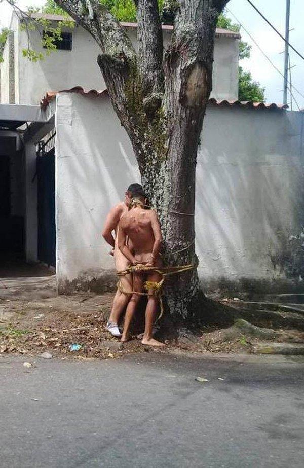 delincuentesdesnudos