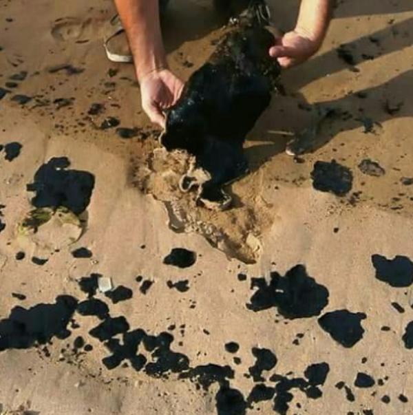 Milagros Paz pedirá evaluar daños ambientales en costas de Paria tras derrame