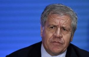 Estados Unidos cree que Luis Almagro es el líder fuerte que la OEA necesita