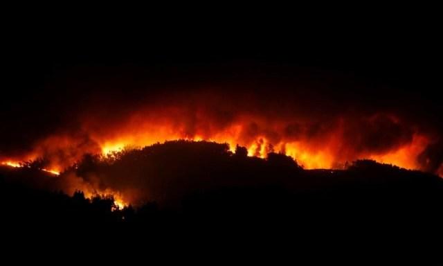 El incendio forestal más letal en la historia de Portugal (Foto: Reuters)