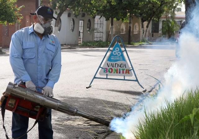El alcalde de Valencia, Miguel Cocchiola, mantiene activas las cuadrillas de fumigación