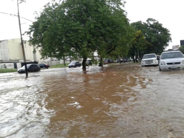 Valencia / Inundaciones / Foto: Cortesía