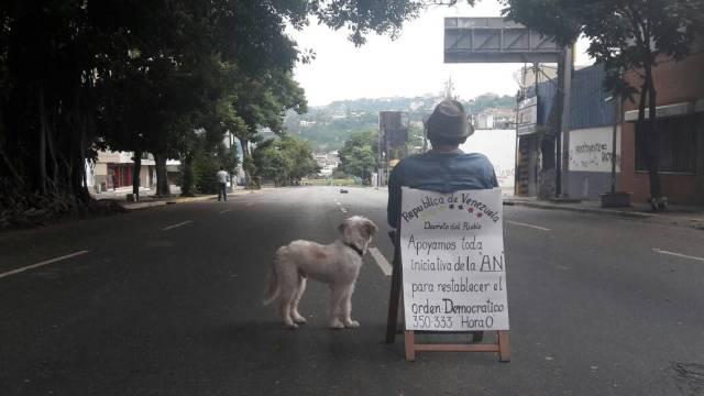 Un hombre acompañado por su perro en la solitaria avenida Luis Roche de Altamira / Foto: Eduardo Ríos - La Patilla
