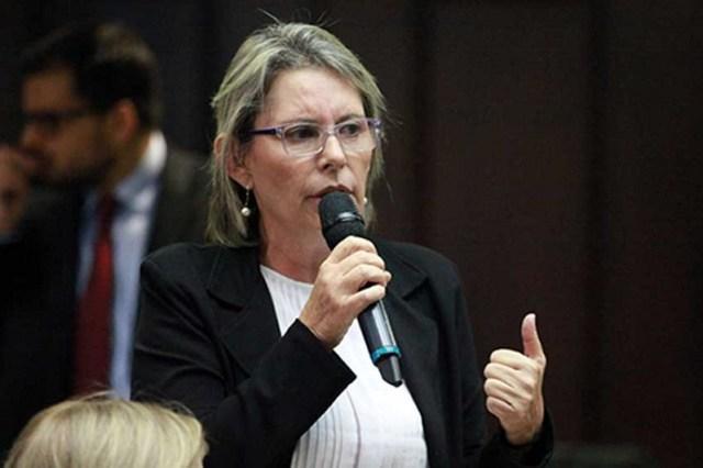 La diputada y vicepresidenta de la Comisión de Medios de la Asamblea Nacional (AN), Olivia Lozano