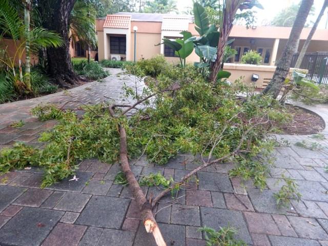 Irma ya está en Florida (Fotos) - LaPatilla.com