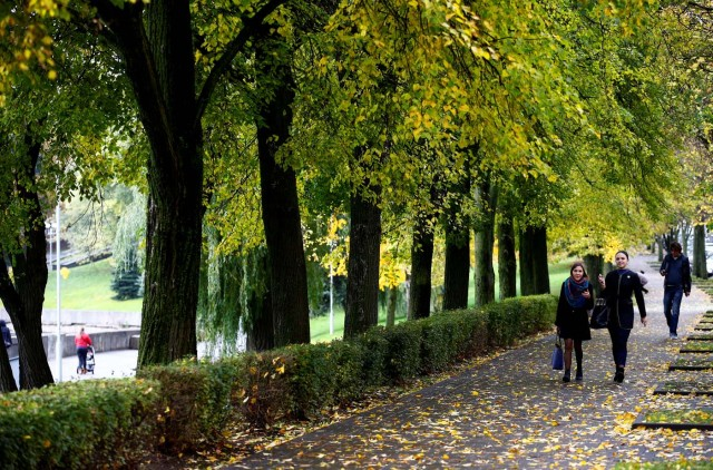 People walk under the trees covered with autumn coloured leaves in central Minsk, Belarus October 12, 2017. REUTERS/Vasily Fedosenko