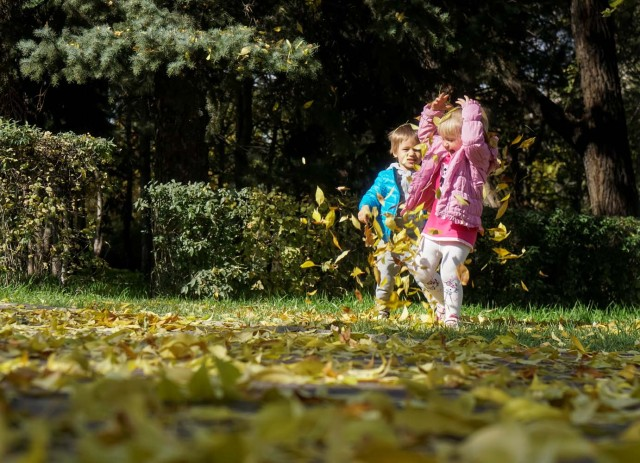 Children play with leaves in a park on a sunny autumn day in Almaty, Kazakhstan October 13, 2017. REUTERS/Shamil Zhumatov