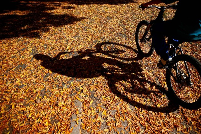 A man bikes on a warm autumn day in the central town park in Zenica, Bosnia and Herzegovina, October 13, 2017. REUTERS/Dado Ruvic