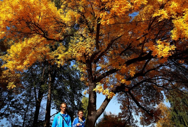 People enjoy a warm autumn day in the central town park in Zenica, Bosnia and Herzegovina, October 13, 2017. REUTERS/Dado Ruvic