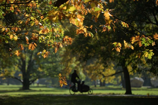 People ride through Tiergarten park on a sunny autumn day in Berlin, Germany October 15, 2017. REUTERS/Stefanie Loos