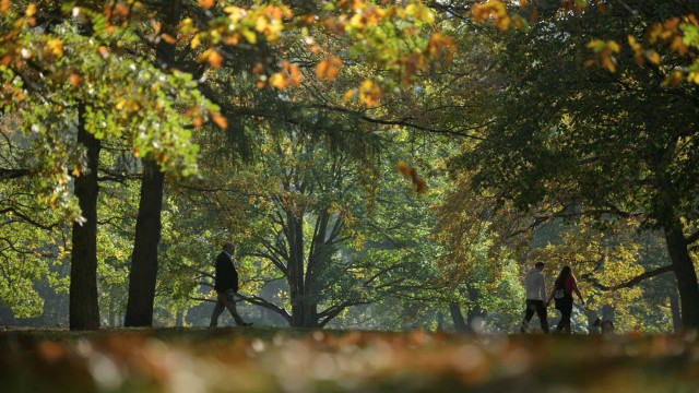 People walk through Tiergarten park on a sunny autumn day in Berlin, Germany October 15, 2017. REUTERS/Stefanie Loos
