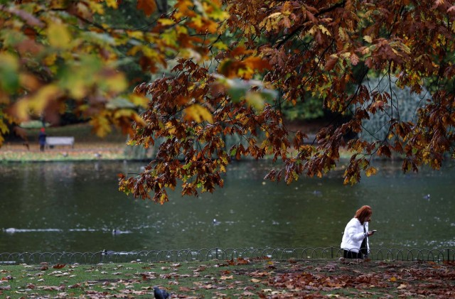 A woman takes a photograph amongst the autumn leaves in St. James's Park in London, Britain October 20, 2017. REUTERS/Peter Nicholls