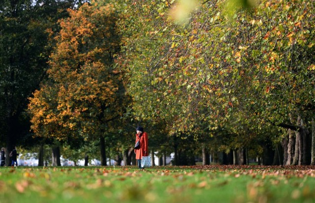 A woman walks past trees displaying autumn colours in Victoria Park, in London, Britain October 21, 2017. REUTERS/Mary Turner