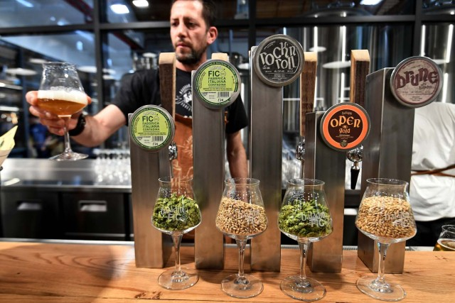 A man offers a glass of artisanal beer at a stand during a press tour at FICO Eataly World agri-food park in Bologna on November 9, 2017.  FICO Eataly World, said to be the world's biggest agri-food park, will open to the public on November 15, 2017. The free entry park, widely described as the Disney World of Italian food, is ten hectares big and will enshrine all the Italian food biodiversity.  / AFP PHOTO / Vincenzo PINTO