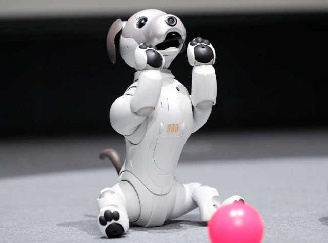 "Sony Corp's entertainment robot ""aibo"" is pictured at its demonstration in Tokyo, Japan November 1, 2017. REUTERS/Kim Kyung-Hoon"
