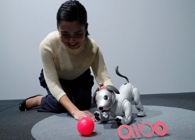 "A staff member touches Sony Corp's entertainment robot ""aibo"" at its demonstration in Tokyo, Japan November 1, 2017. REUTERS/Kim Kyung-Hoon"