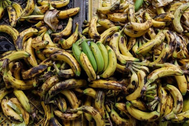 Bananas for sale are seen at a street market in Caracas, Venezuela November 3, 2017. Picture taken November 3, 2017. REUTERS/Marco Bello