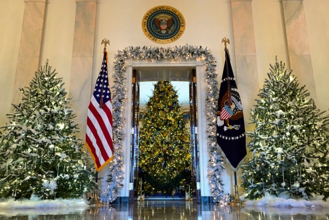 The official White House Christmas tree is seen from the Cross Hall of the White House in Washington, U.S., November 27, 2017.  REUTERS/Kevin Lamarque