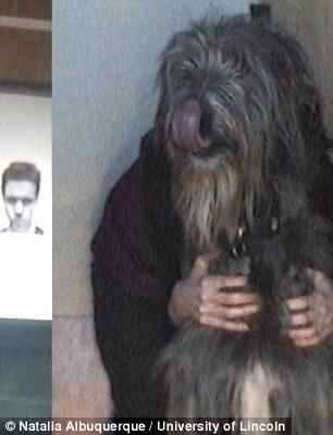 perros1