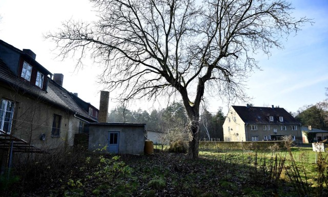 Houses are pictured in Alwine, a splinter settlement of the town Uebigau-Wahrenbrueck, eastern Germany, on November 30, 2017. On December 9, 2017, Alwine's dozen buildings, plus sheds and garages, are to go under the hammer at an auction in Berlin, with a starting price of 125,000 euros ($148,000). / AFP PHOTO / Tobias Schwarz