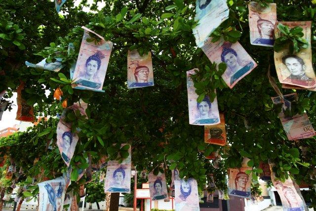 Billetes de bolívares que cuelgan en un árbol en una calle en Maracaibo, Venezuela, 11 de noviembre del 2017. REUTERS/Isaac Urrutia