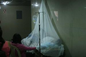 Brote de paludismo en zona indígena del Delta Amacuro no ha sido atendido