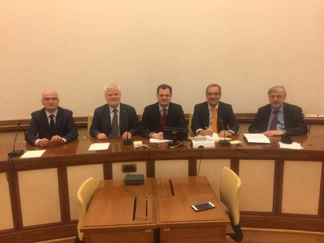 Stefanelli parlamento Italiano