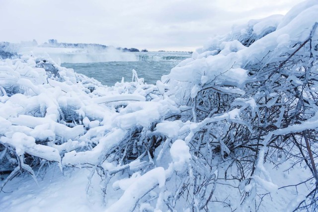 Ice and snow cover branches near the brink of the Horseshoe Falls in Niagara Falls, Ontario, Canada, January 3, 2018. REUTERS/Aaron Lynett