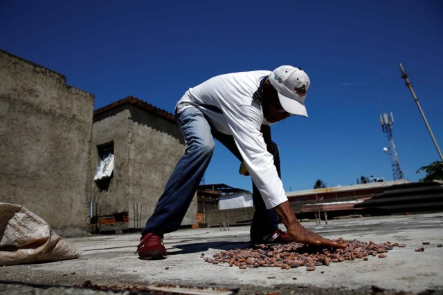 Yoffre Echarri extends cocoa beans to dry them at the roof of his house in Caruao, Venezuela October 24, 2017. Picture taken October 24, 2017. REUTERS/Carlos Garcia Rawlins