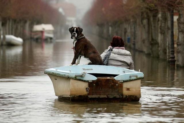 VAL107. VILLENNES SUR SEINE (FRANCIA), 30/01/2018.- Una mujer pasea con su perro en un barco durante las inundaciones del río Sena a su paso por Villennes Sur Seine (Francia) hoy, 30 de enero de 2018. Las numerosas lluvias han provocado la crecida del Sena hasta causar inundaciones en París y sus alrededores. EFE/ Yoan Valat