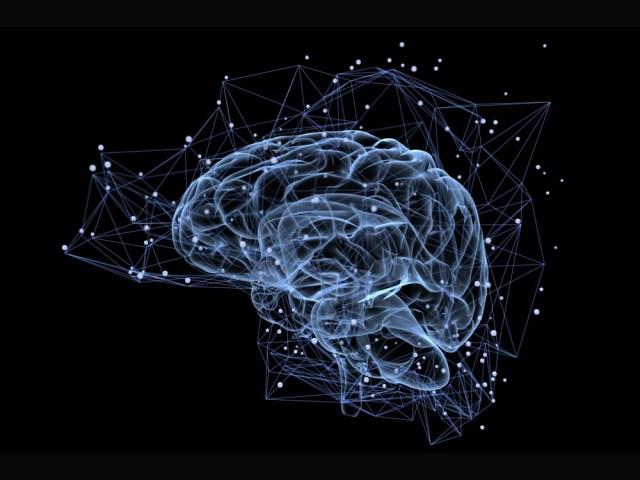 cerebro-espacio_0