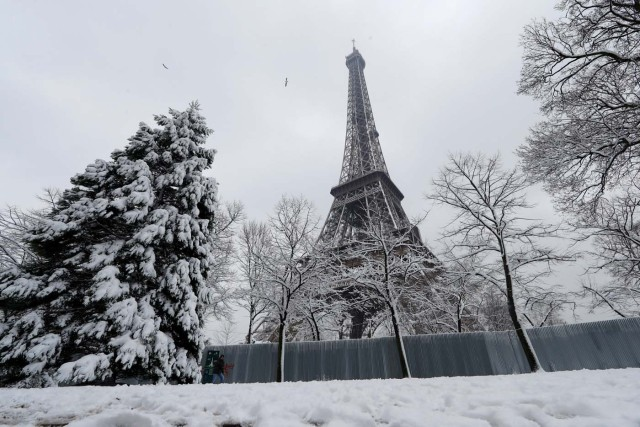 Snow-covered trees are seen near the Eiffel Tower in Paris, as winter weather with snow and freezing temperatures arrive in France, February 7, 2018. REUTERS/Gonzalo Fuentes